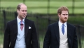 prince-william-prince-harry-baby-archie-privacy
