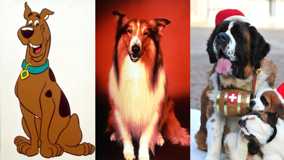 famous-dogs-scooby-doo-lassie-beethoven