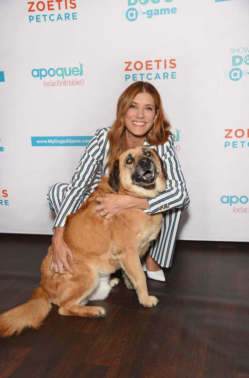 Kate Walsh and rescue dog Rosie