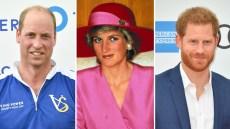 princess-diana-to-mend-prince-william-prince-harry-royal-rift