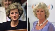 princess-diana-duchess-camilla-prince-charles