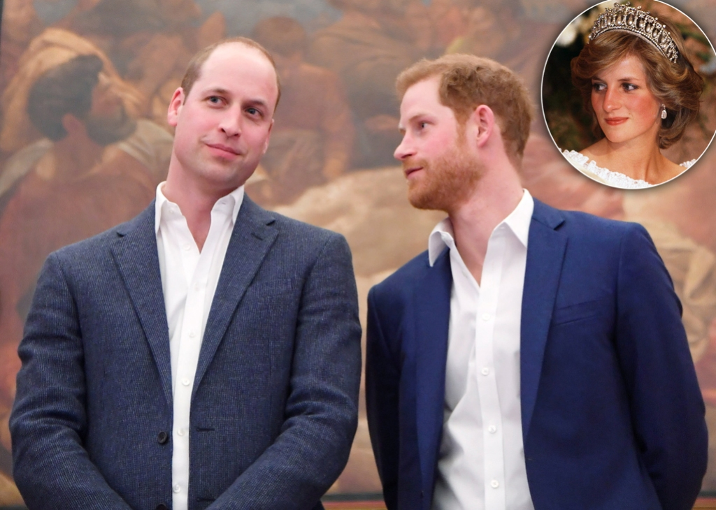 Prince William and Harry Are 'In Different Places' But Both 'Following Their Mother's Dream,' Royal Expert Says