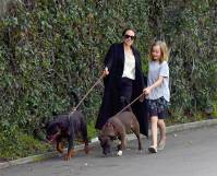 Angelina Jolie and daughter Vivienne are seen being pulled by their dogs as they leave a pet grooming salon in Los Angeles