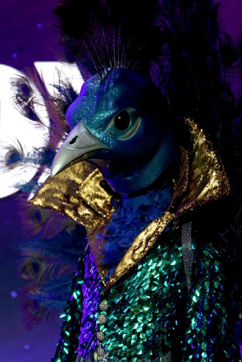The Masked Singer Donny Osmond