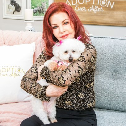 Priscilla Presley at Home and Family with a Rescue Dog