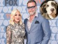 Tori Spelling and Dean McDermott Welcome Adorable Rescue Dog Into Their Family