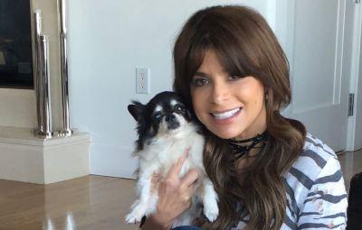 Paula Abdul dog