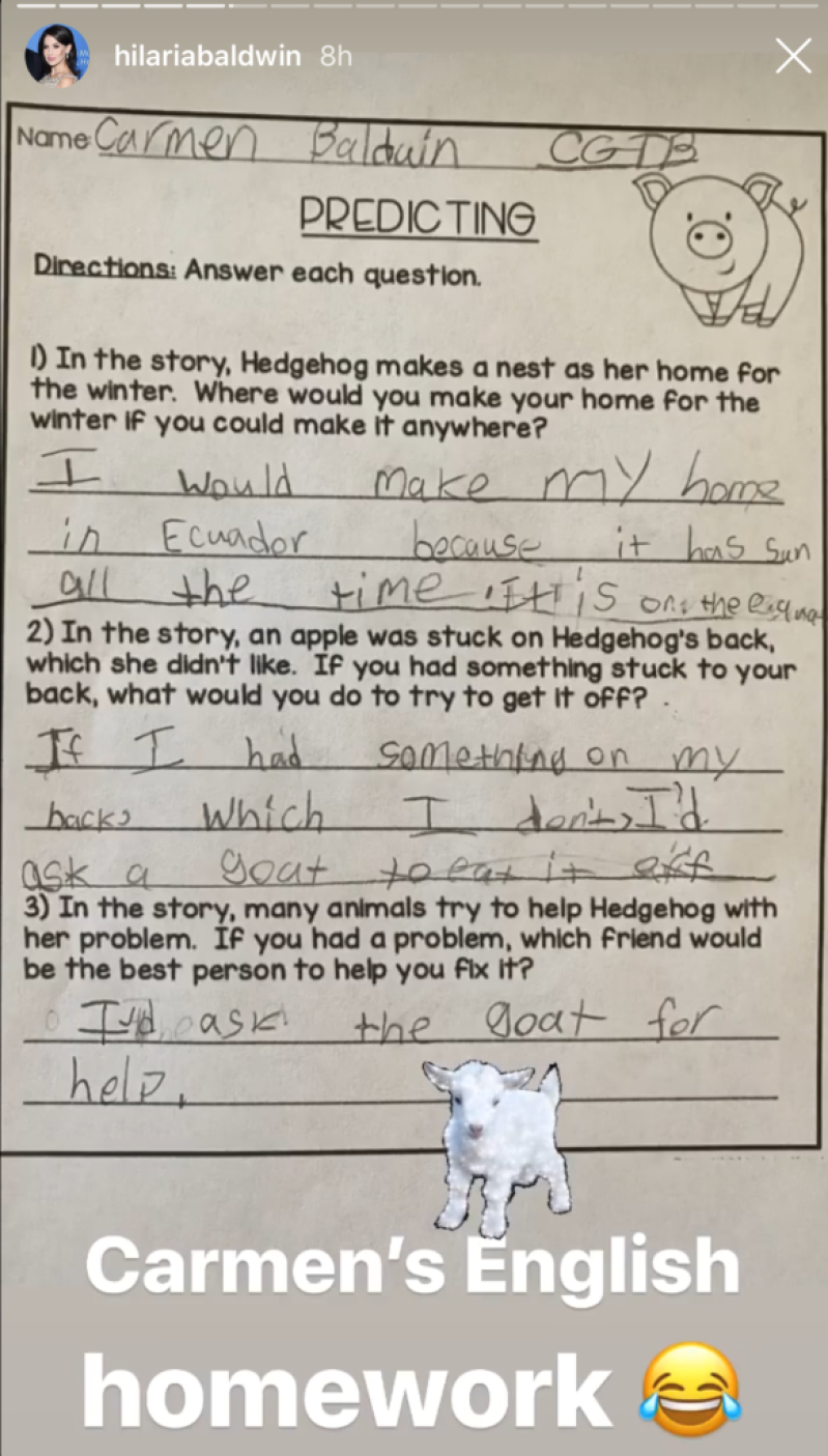 Hilaria Baldwin's daughter's homework