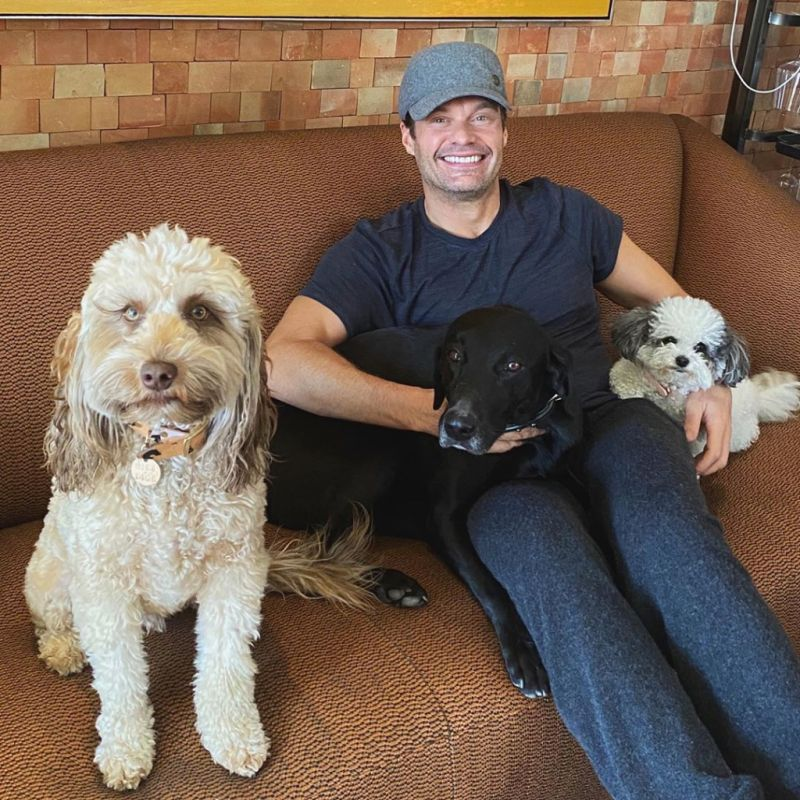 Ryan Seacrest and his dogs