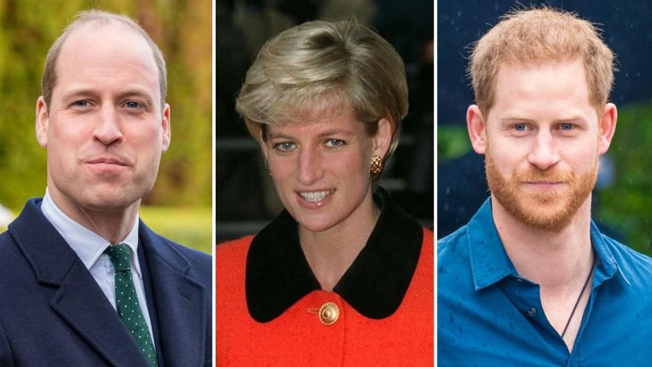 prince-william-and-prince-harrys-plans-to-honor-mom-princess-diana