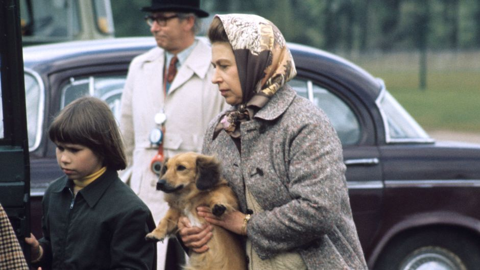 royal-family-pets-a-guide-to-queen-elizabeths-dogs-and-more
