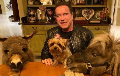 where-does-arnold-schwarzenegger-live-photos-inside-l-a-home