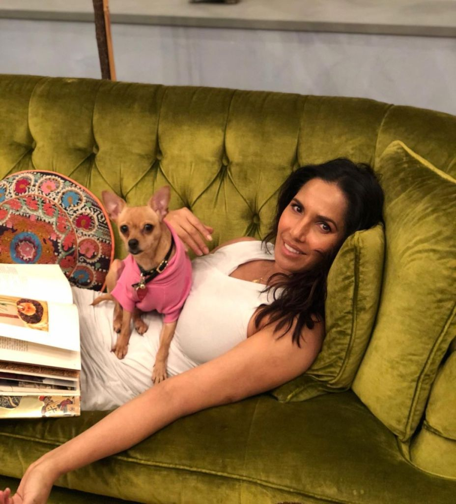 where-does-padma-lakshmi-live-photos-inside-new-york-home