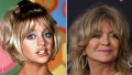 A Living Legend! Goldie Hawn's Transformation Over the Years