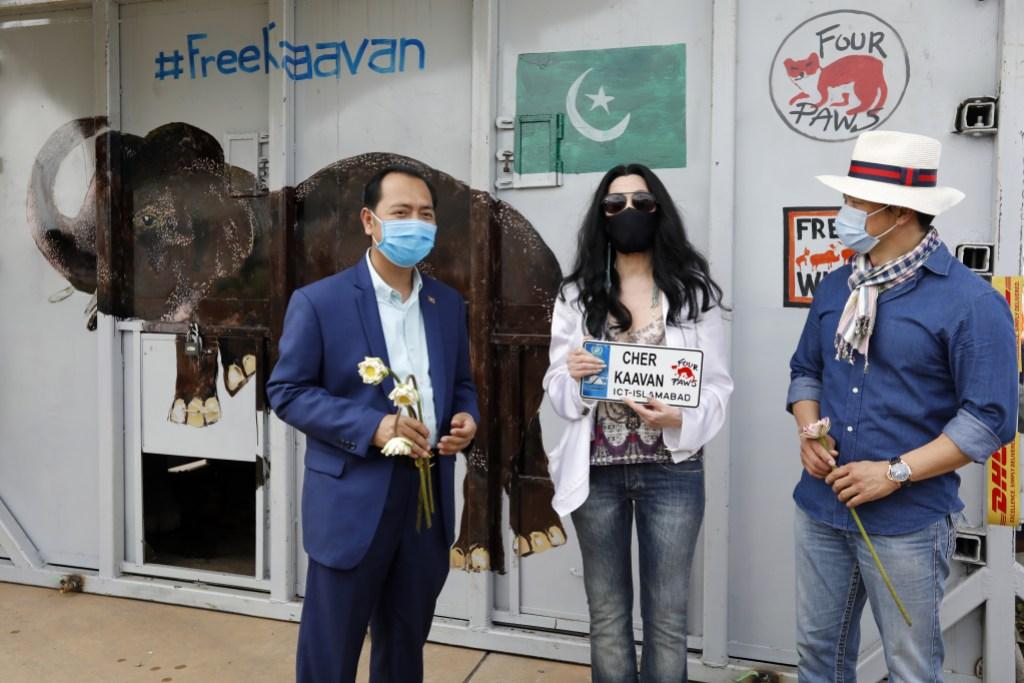 Cher With Elephant Kaavan