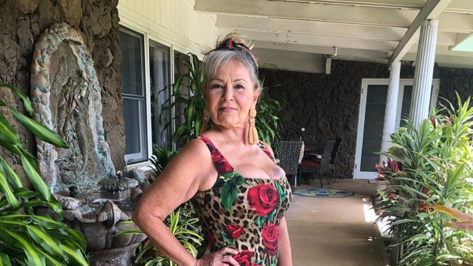 where-does-roseanne-barr-live-photo-and-tour-of-hawaii-home